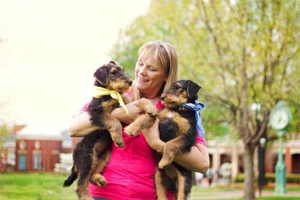 Caron Jones airedale terrier breeder