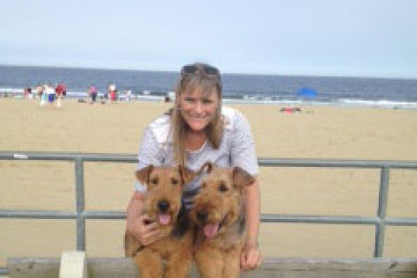 airedale terriers at the beach
