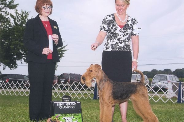 bria-new-grand-champion-august-201781E640BD-B534-FA1C-1CC4-B2C277752407.jpg